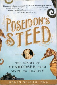 Book cover of Poseidons steed