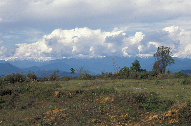 Looking northeast from Putao