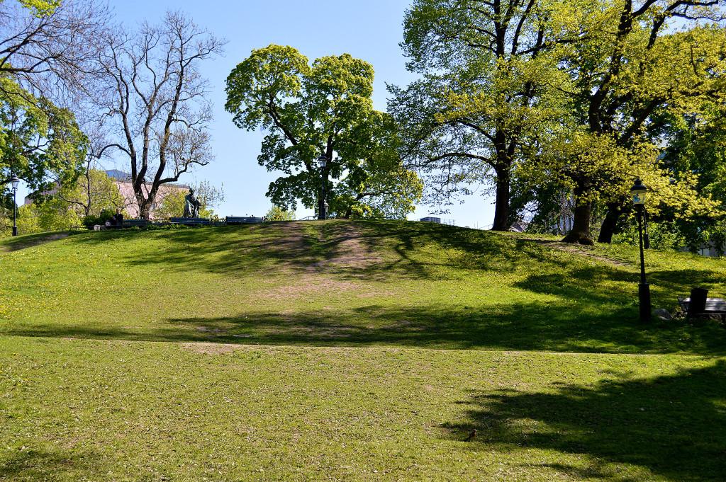 Floras Hill